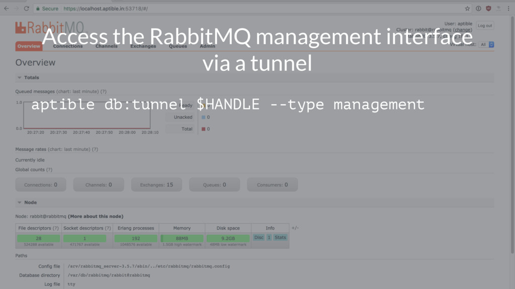 Access the RabbitMQ management interface via a ...