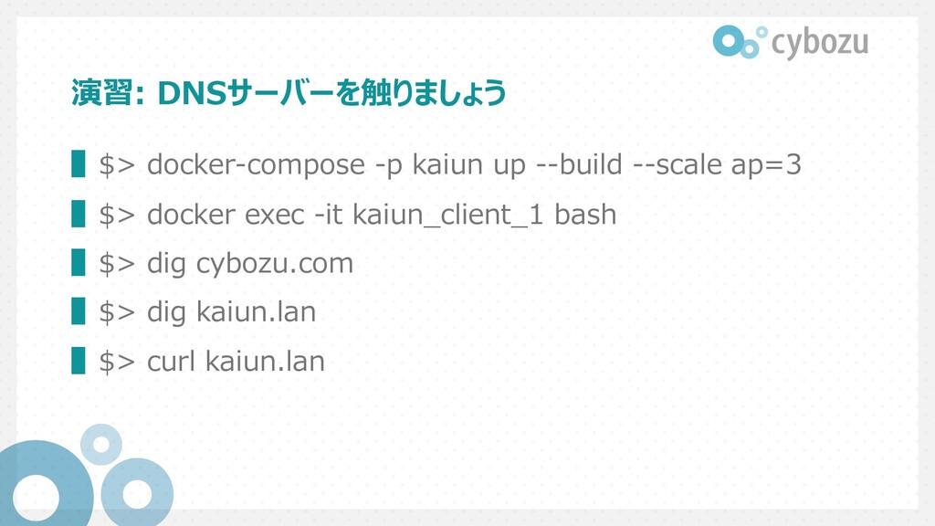 演習: DNSサーバーを触りましょう ▌$> docker-compose -p kaiun ...