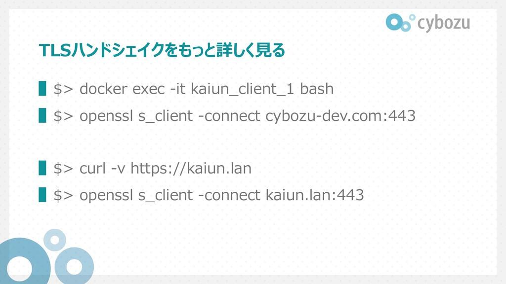 TLSハンドシェイクをもっと詳しく⾒る ▌$> docker exec -it kaiun_c...
