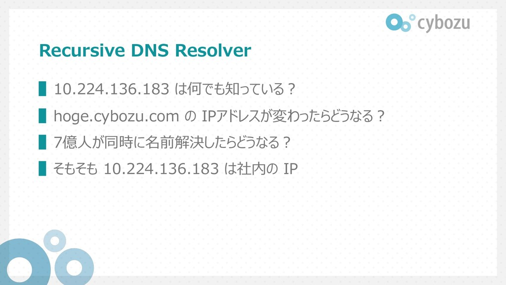 Recursive DNS Resolver ▌10.224.136.183 は何でも知ってい...