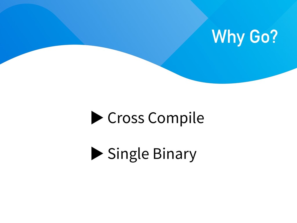 Cross Compile Single Binary Why Go?