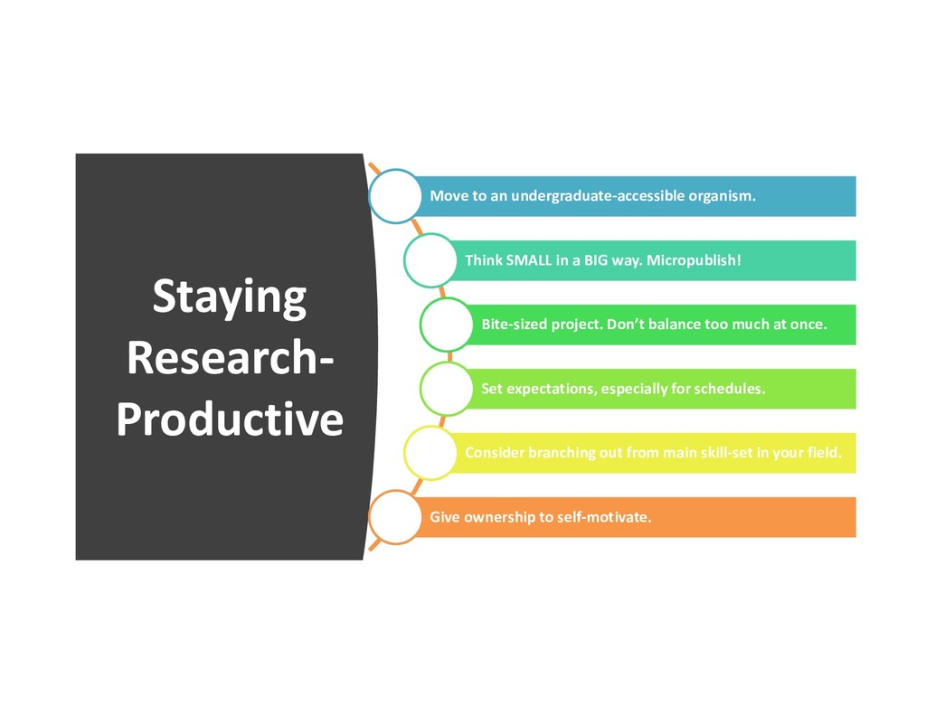 Staying Research- Productive Move to an undergr...