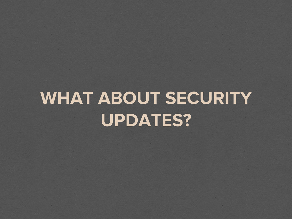 WHAT ABOUT SECURITY UPDATES?