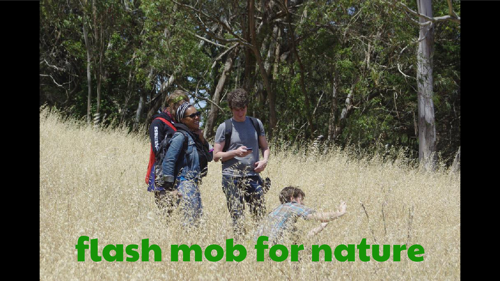 flash mob for nature