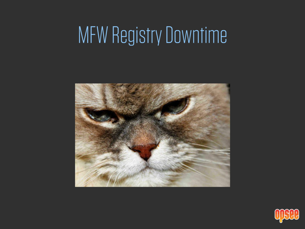 MFW Registry Downtime