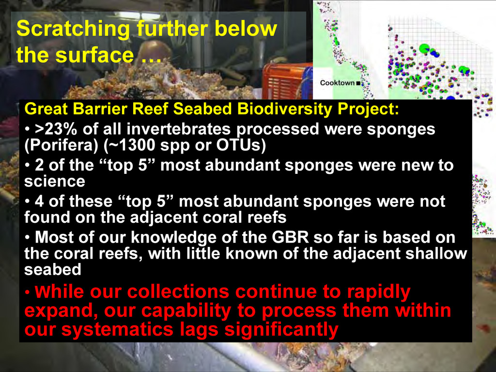 Great Barrier Reef Seabed Biodiversity Project:...