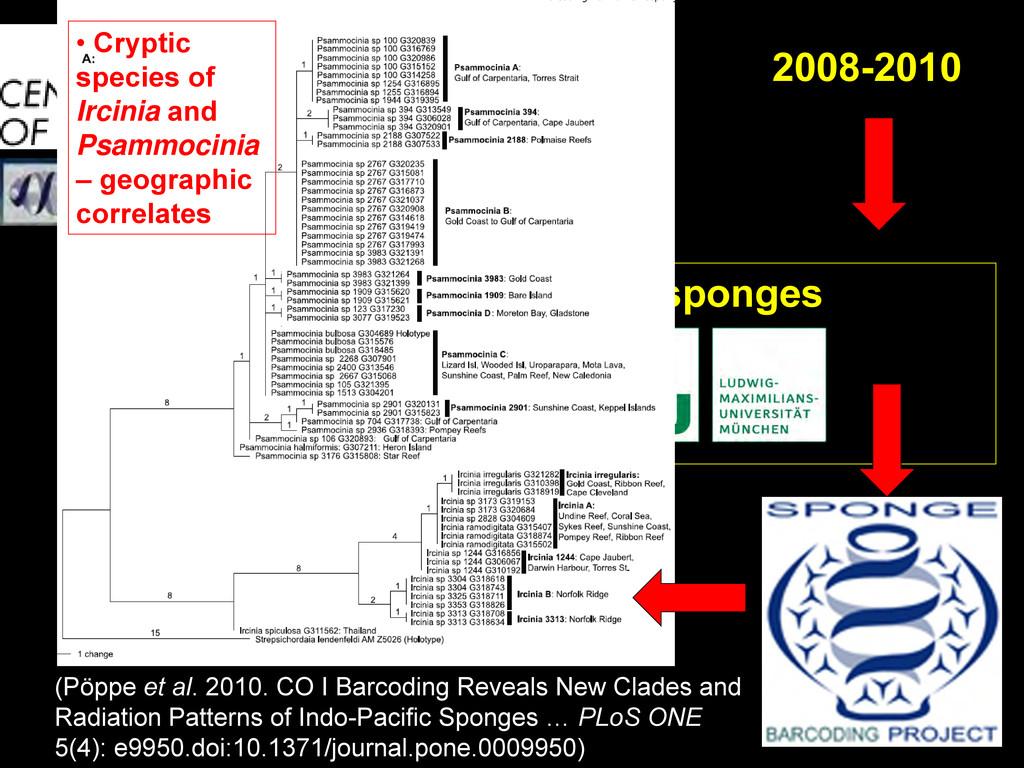 ~20,000 specimens of sponges 2008-2010 (Pöppe e...