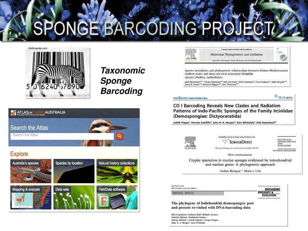 KeSimpulan.com Taxonomic Sponge Barcoding
