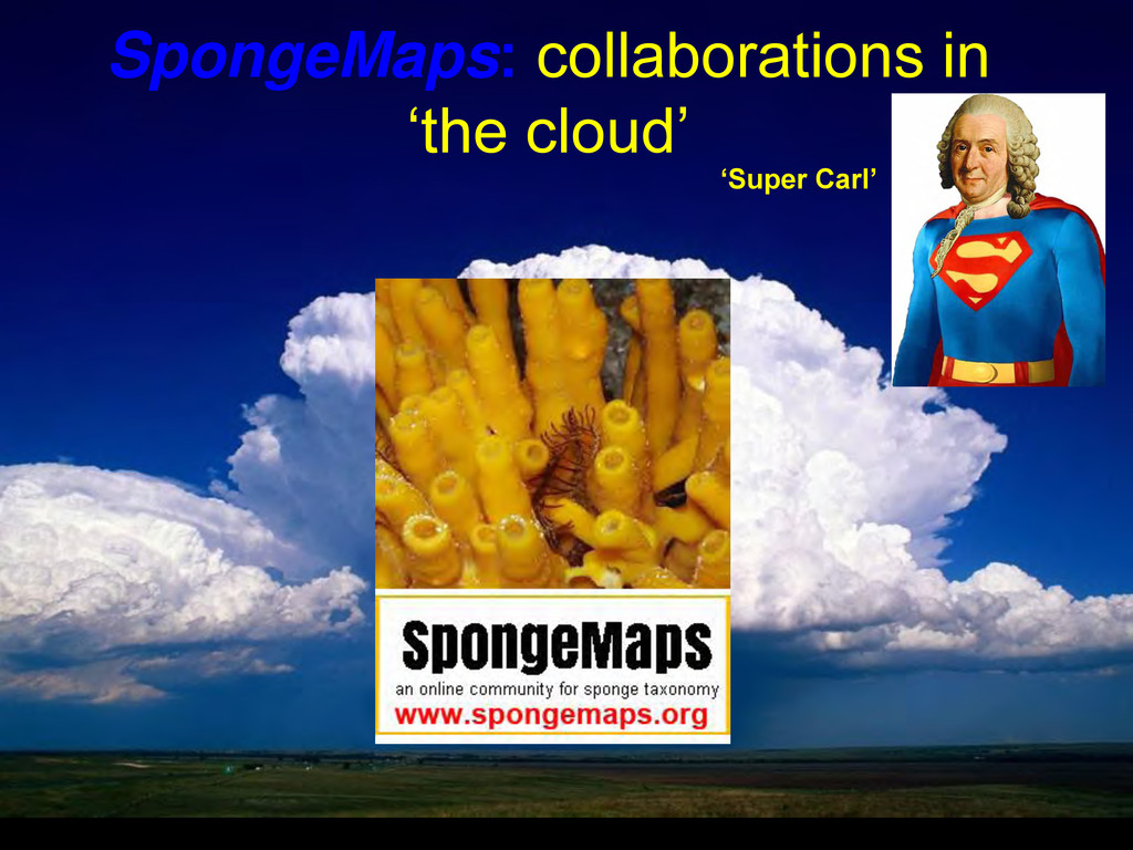 SpongeMaps: collaborations in 'the cloud' 'Supe...