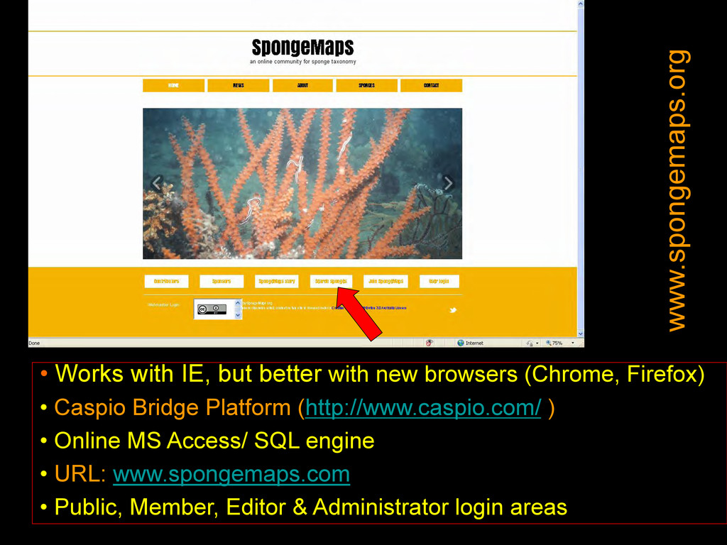 • Works with IE, but better with new browsers (...