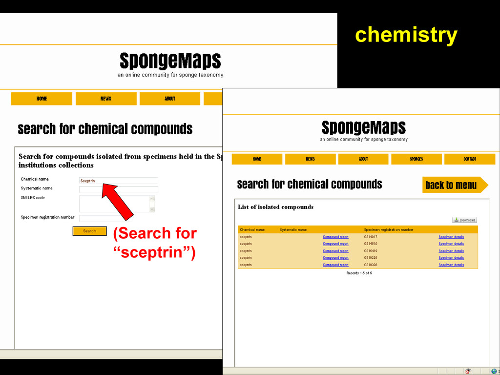 """chemistry (Search for """"sceptrin"""")"""