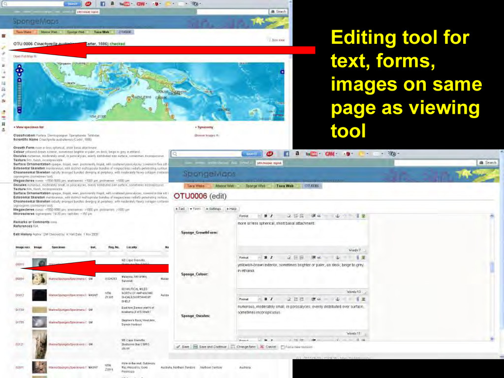Editing tool for text, forms, images on same pa...