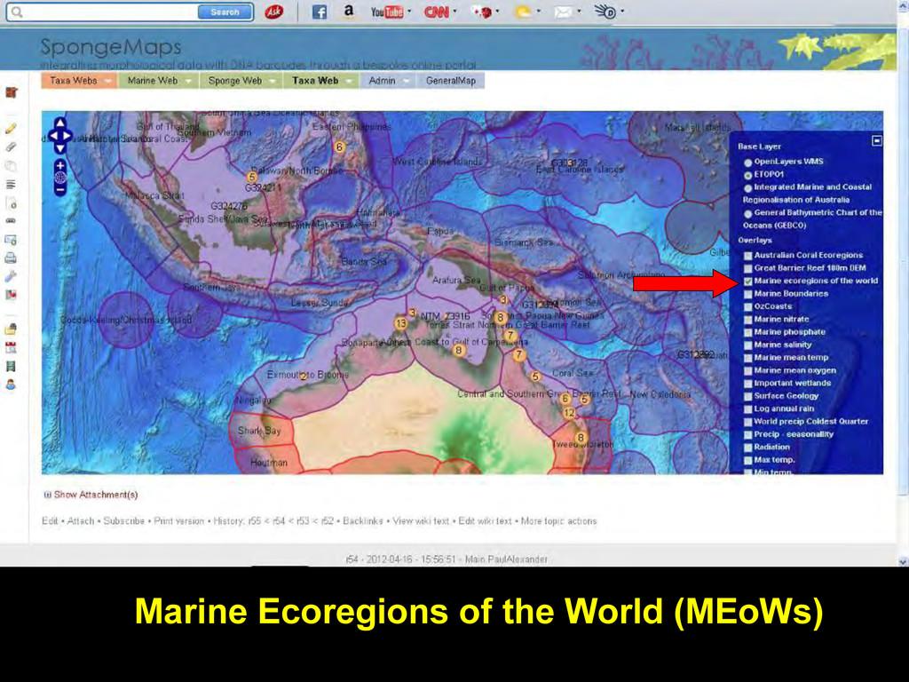 Marine Ecoregions of the World (MEoWs)