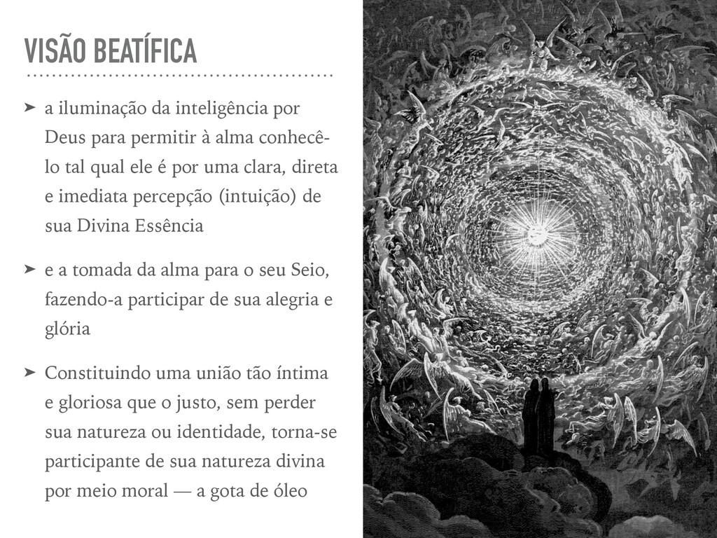 VISÃO BEATÍFICA ➤ a iluminação da inteligência ...