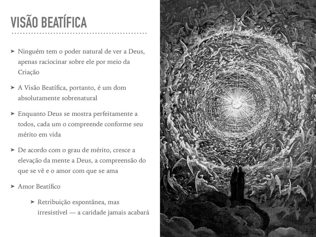 VISÃO BEATÍFICA ➤ Ninguém tem o poder natural d...