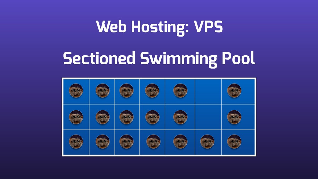 Web Hosting: VPS Sectioned Swimming Pool