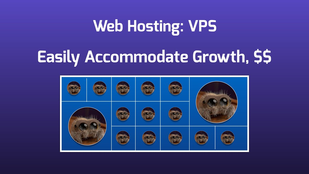 Web Hosting: VPS Easily Accommodate Growth, $$