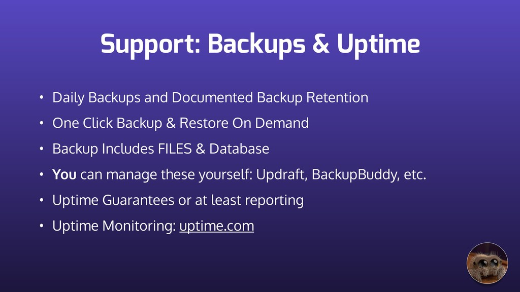 Support: Backups & Uptime • Daily Backups and D...
