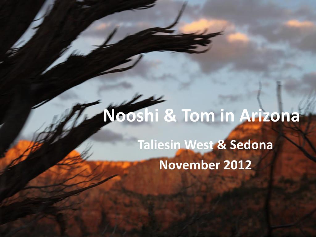 Nooshi & Tom in Arizona Taliesin West & Sedona ...