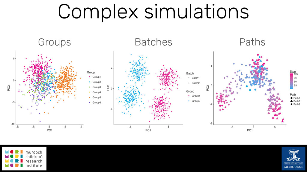 Complex simulations Groups Batches Paths