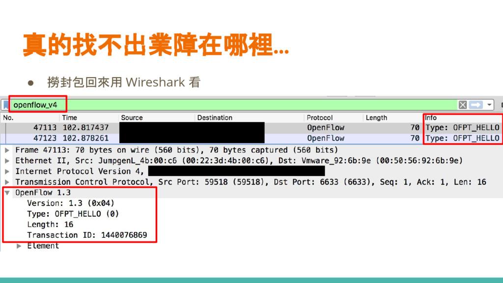 真的找不出業障在哪裡... ● 撈封包回來用 Wireshark 看