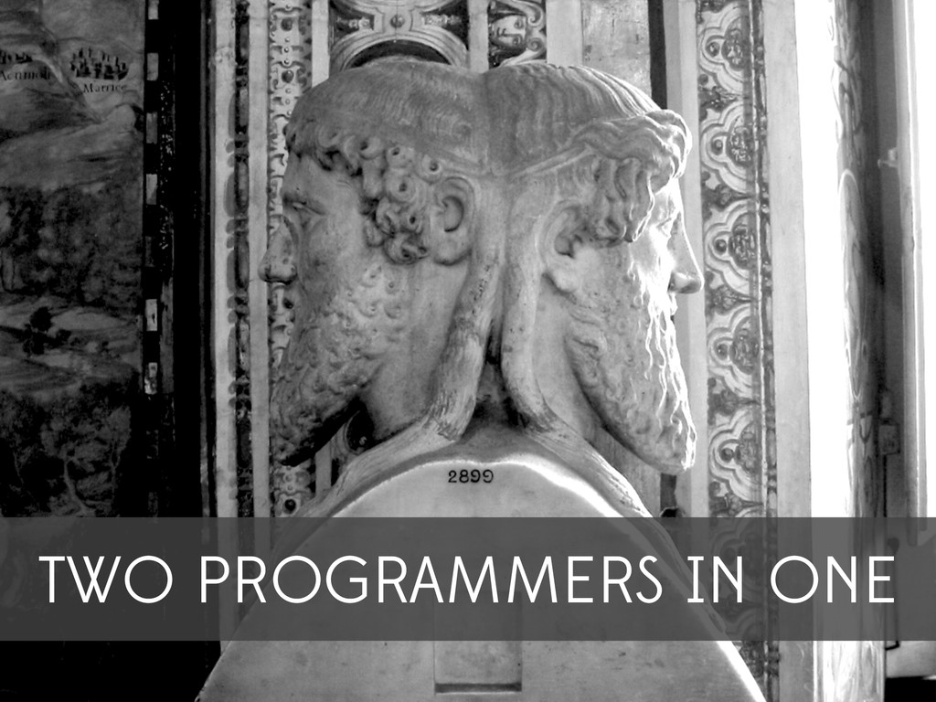 TWO PROGRAMMERS IN ONE