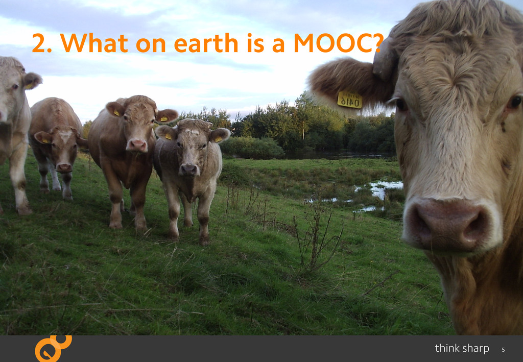 5 2. What on earth is a MOOC?