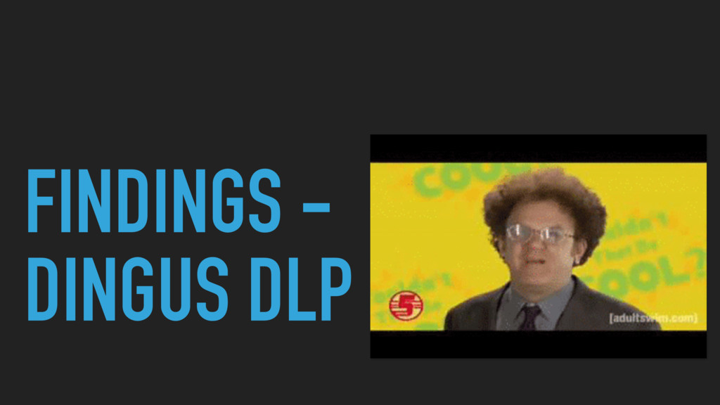 FINDINGS - DINGUS DLP