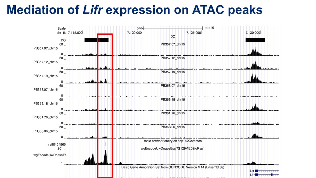 Mediation of Lifr expression on ATAC peaks Scal...