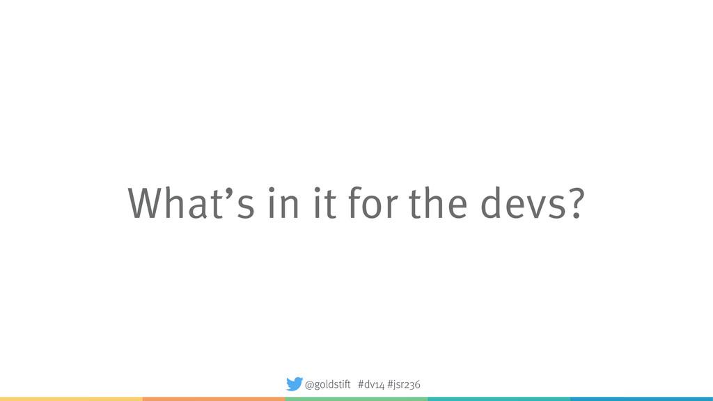 What's in it for the devs? @goldstift #dv14 #js...