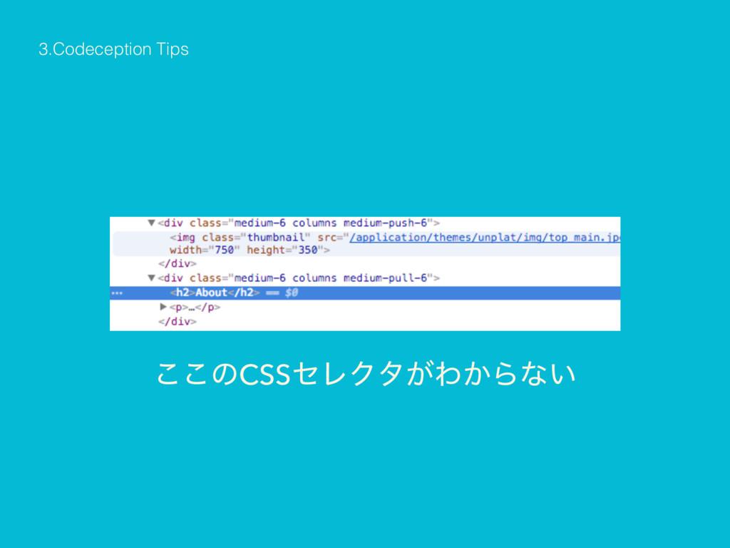 3.Codeception Tips ͜͜ͷCSSηϨΫλ͕Θ͔Βͳ͍