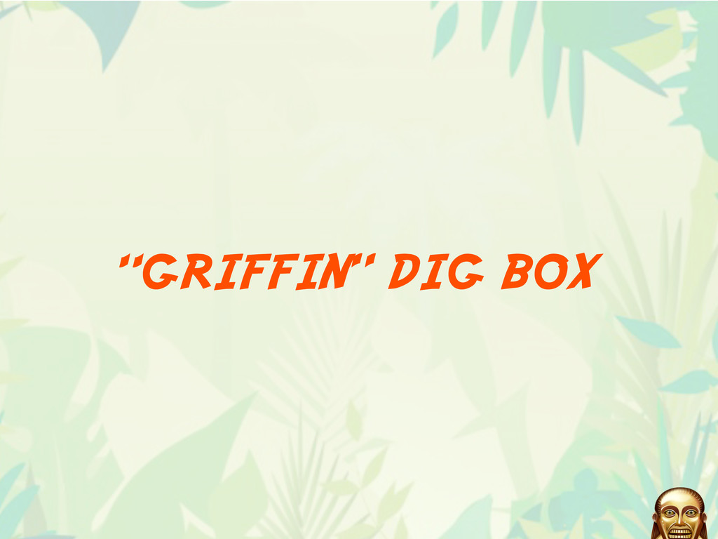 """GRIFFIN"" DIG BOX"