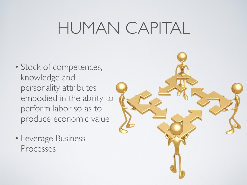 HUMAN CAPITAL • Stock of competences, knowledge...