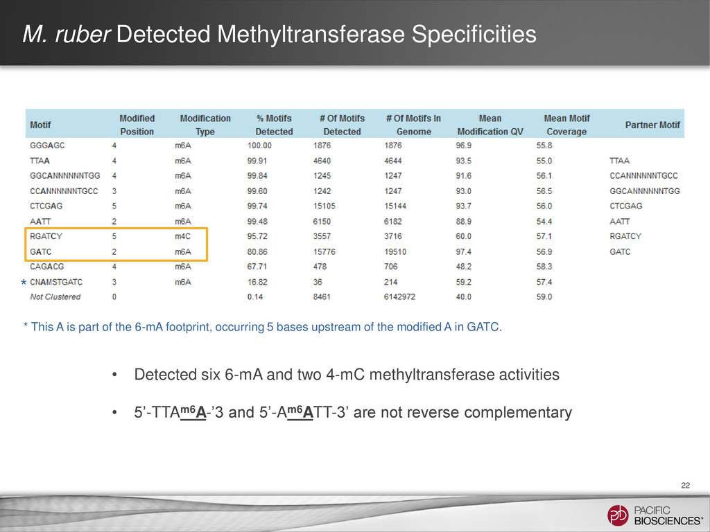 M. ruber Detected Methyltransferase Specificiti...