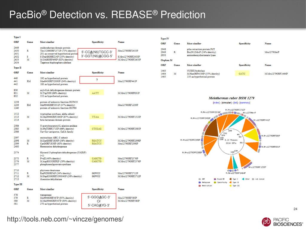 PacBio® Detection vs. REBASE® Prediction 24 5'-...