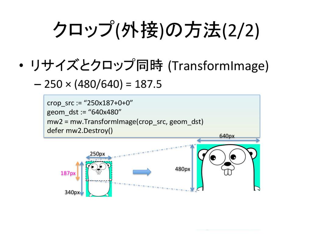 クロップ(外接)の方法(2/2) • リサイズとクロップ同時 (TransformIma...