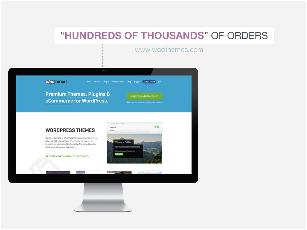 """HUNDREDS OF THOUSANDS"" OF ORDERS www.woothemes..."
