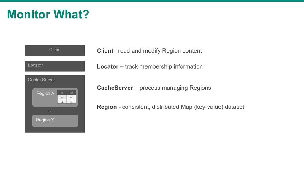 Monitor What? Cache Server Region A Region X Va...
