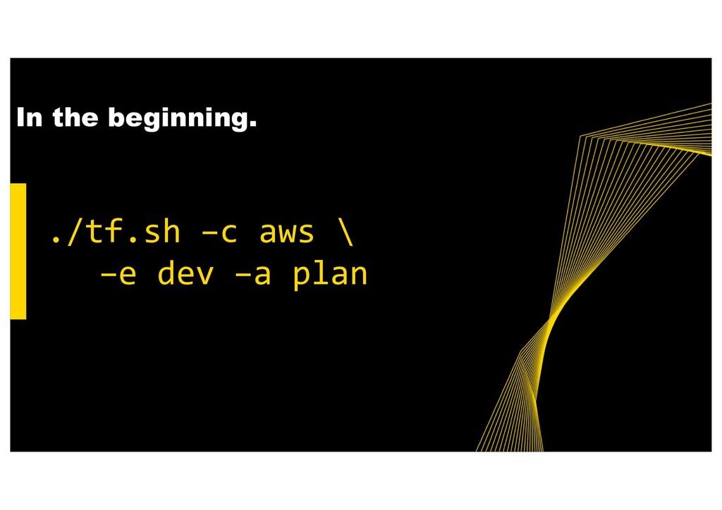 ./tf.sh –c aws \ –e dev –a plan In the beginnin...