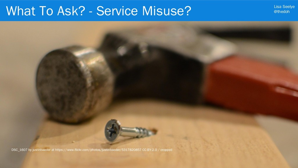 Lisa Seelye @thedoh What To Ask? - Service Misu...