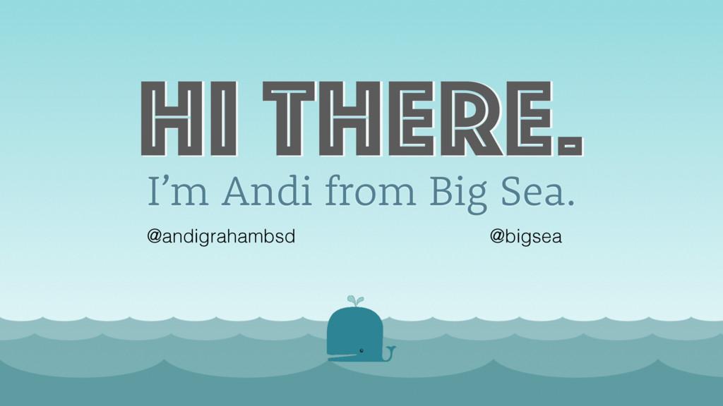 I'm Andi from Big Sea. @andigrahambsd @bigsea H...