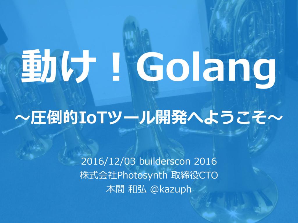 動け!Golang 〜圧倒的IoTツール開発へようこそ〜 2016/12/03 builder...