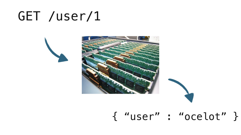 """GET /user/1 { """"user"""" : """"ocelot"""" }"""