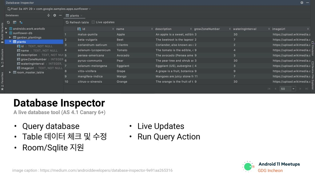 GDG Incheon Database Inspector A live database ...