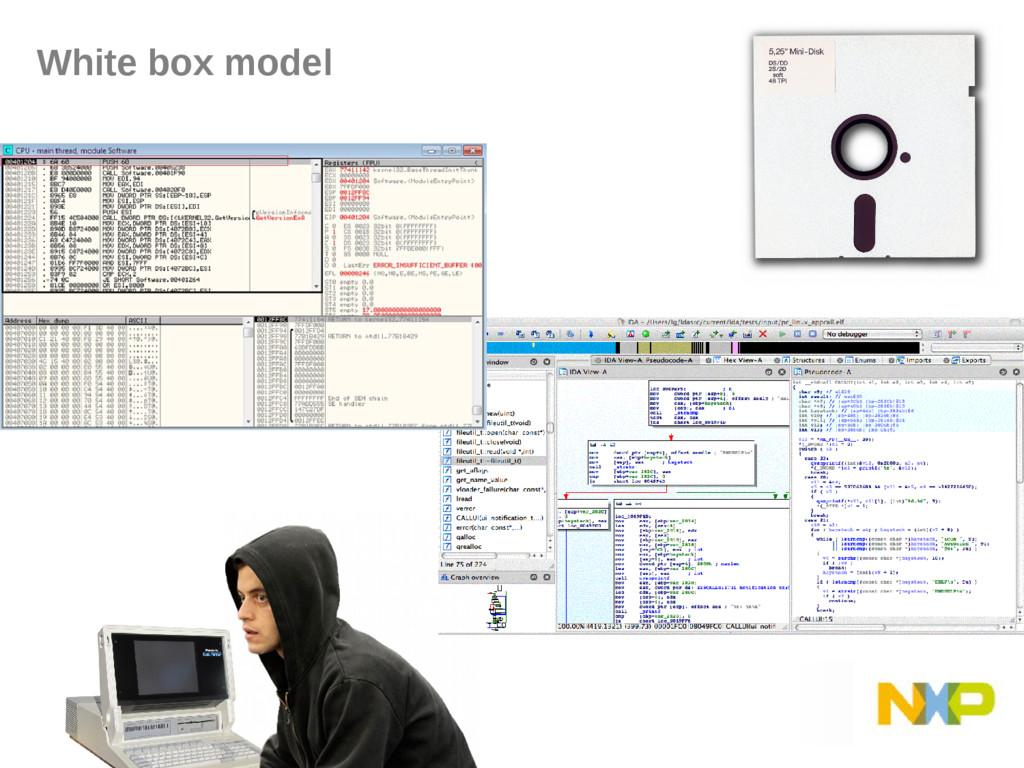 White box model