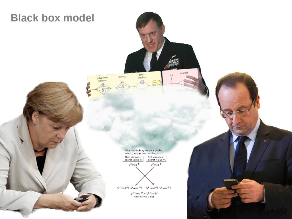 Black box model