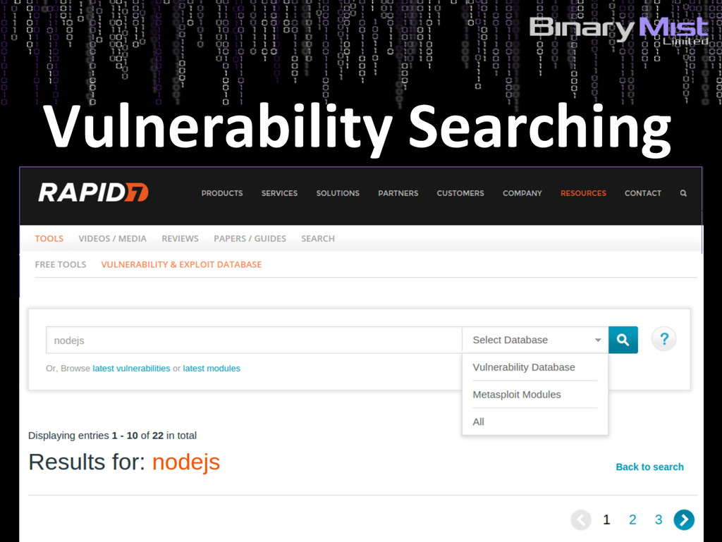 Vulnerability Searching