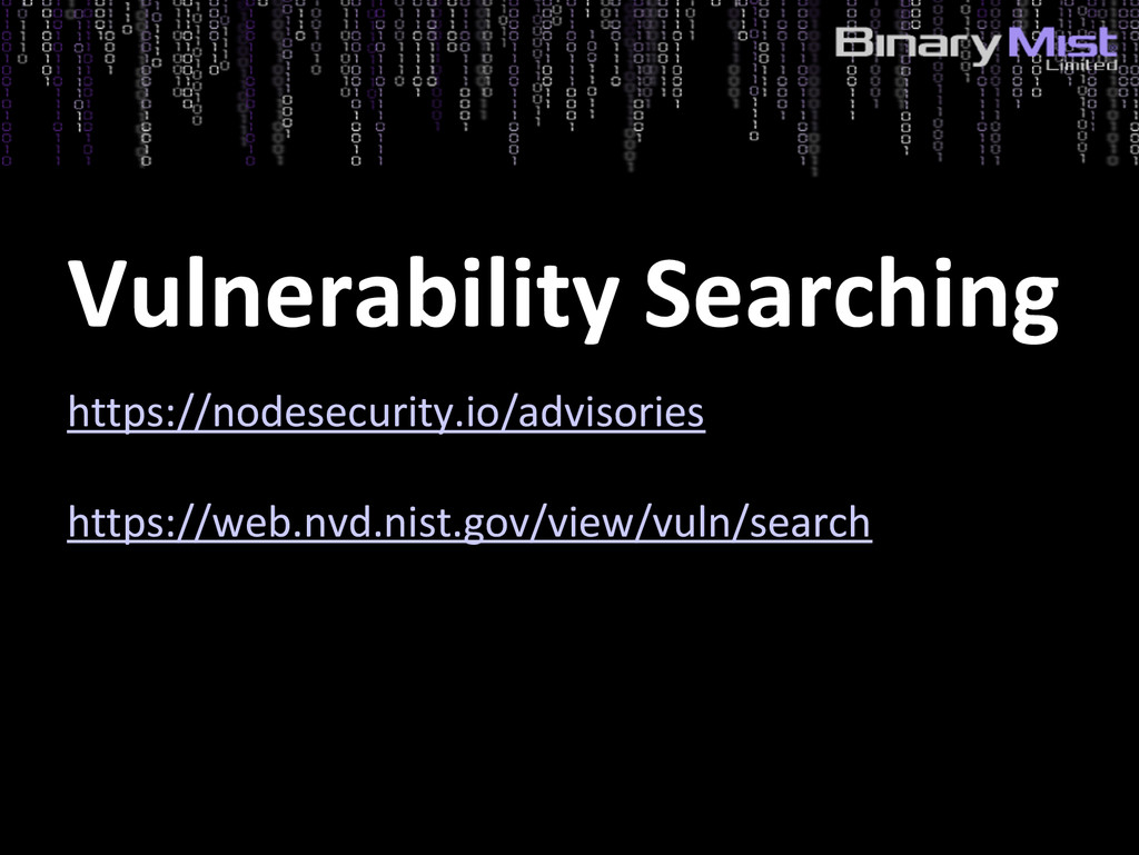 Vulnerability Searching https://nodesecurity.io...