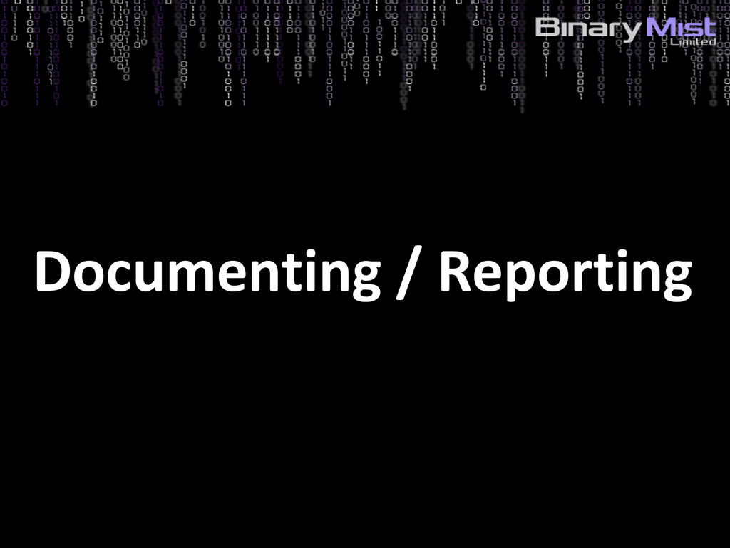 Documenting / Reporting