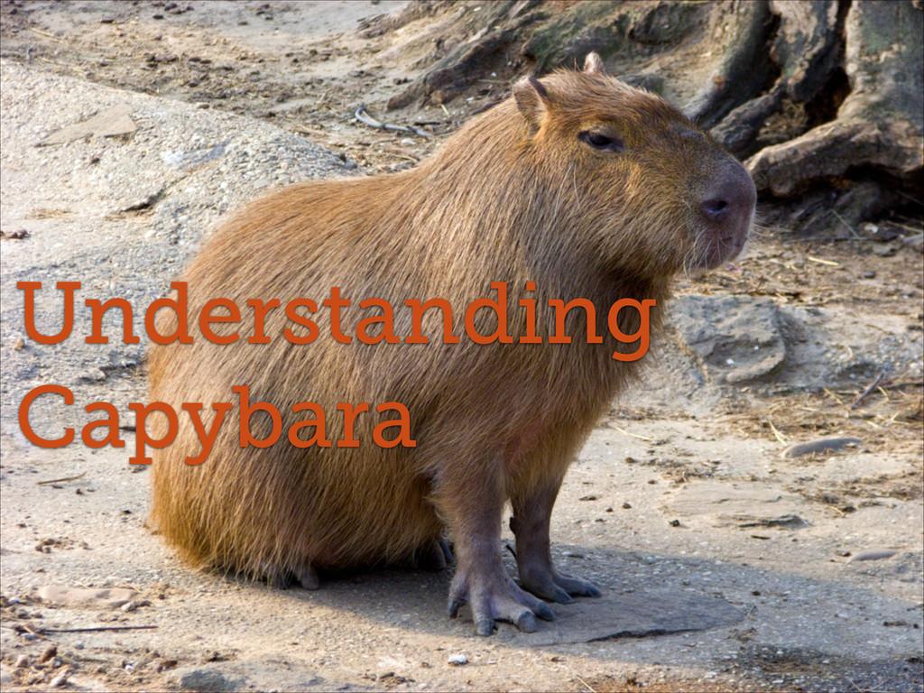 Understanding Capybara